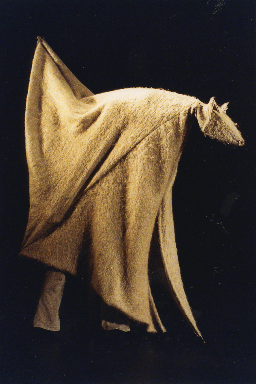 A large wolf shaped puppet is made of rough grey fabric. He is being manipulated by a performer who is entirely inside the fabric, only the bottom of her legs are visible. From the